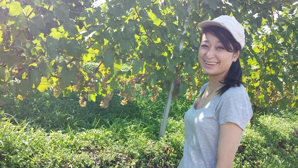 三澤彩奈(ワイン醸造家)wikiプロフ、きっかけやプライベートは【7ルール】